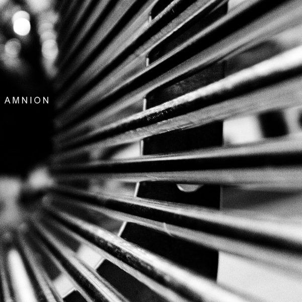 amnion_300_dpi