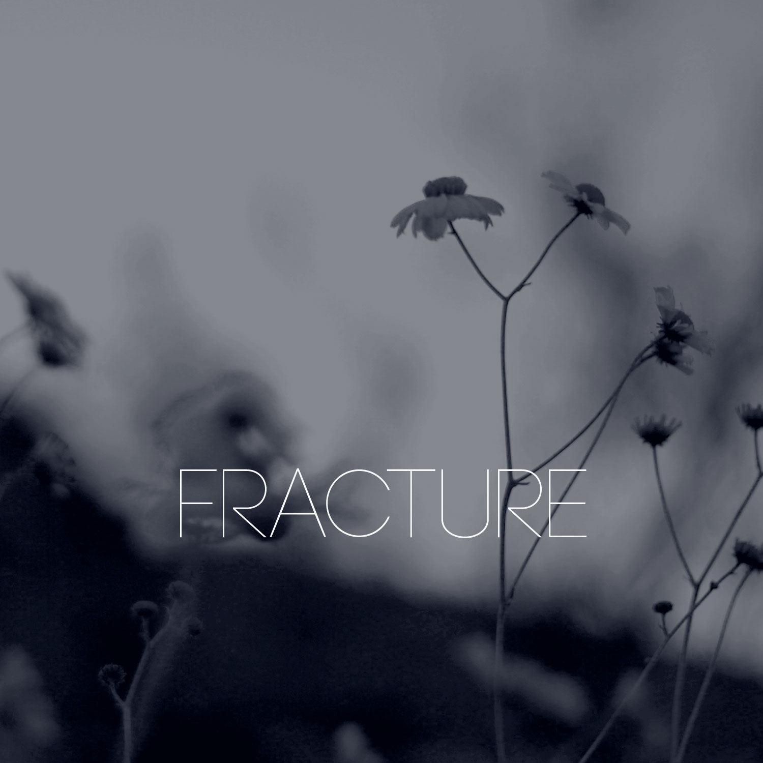 Row Boat and Apta - Fracture - Cover Photography by Daniel Tuttle