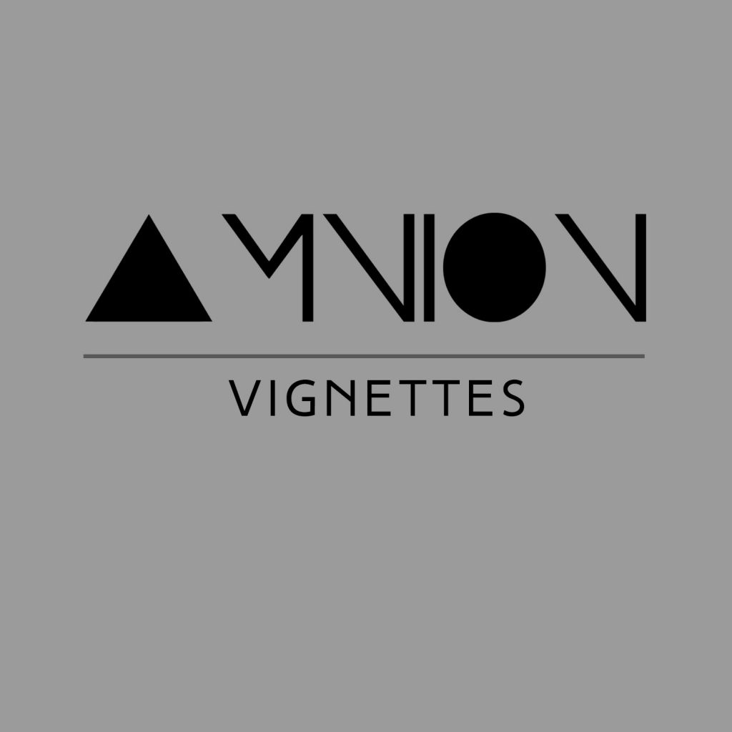Cover for Vignettes by AMNION