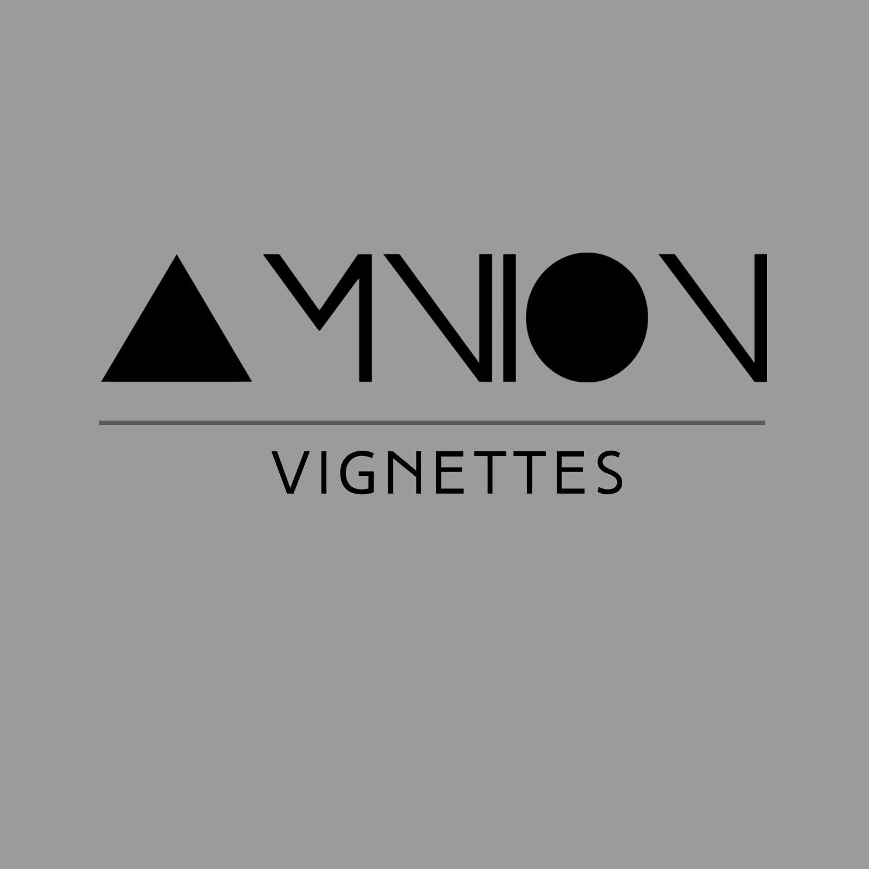 AMNION Vignettes Front Cover